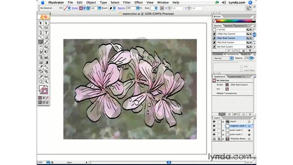 Creating a watercolor painting effect: Illustrator CS2 Creative Techniques