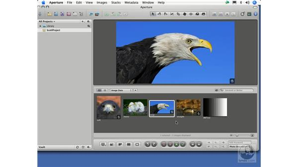 Is Aperture a replacement for Photoshop?: Aperture 1.1 Essential Training