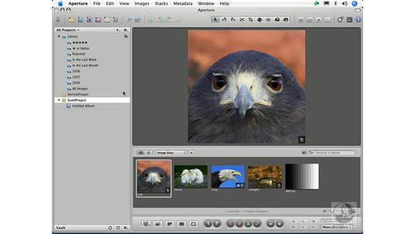 Creating projects: Aperture 1.1 Essential Training