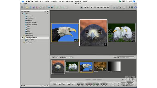 Viewing and arranging images: Aperture 1.1 Essential Training