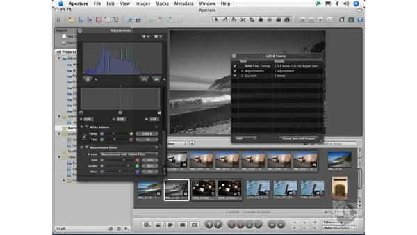 Using the Lift and Stamp tools to copy and paste adjustments: Aperture 1.1 Essential Training