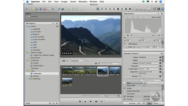 Viewing, adding, and extracting: Aperture 1.1 Essential Training
