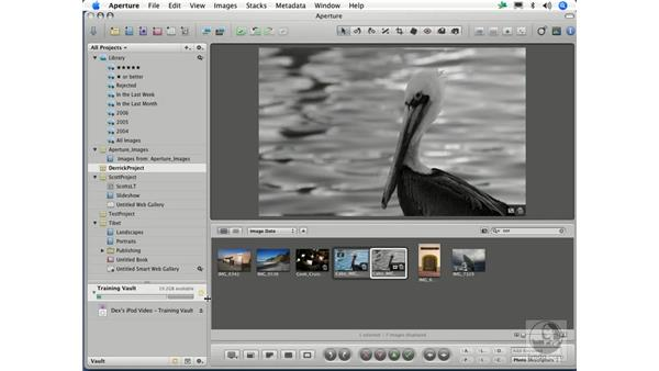 Backing up with vaults: Aperture 1.1 Essential Training