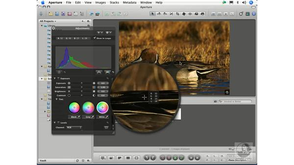 Loupe with color readout: Aperture 1.1 Essential Training