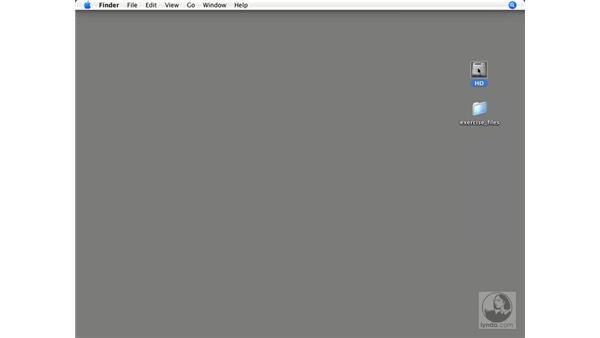 Resetting Illustrator CS2 preferences on open: Illustrator CS2 Power Shortcuts