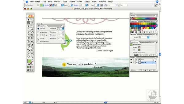 Magic wand selections: Illustrator CS2 Power Shortcuts