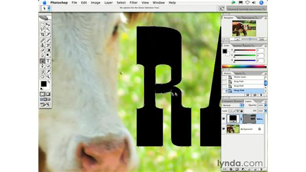 What is the difference between raster and vector?: Photoshop CS2 FAQs