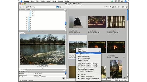 How can I work with my Raw files in Bridge without opening Photoshop?: Photoshop CS2 FAQs