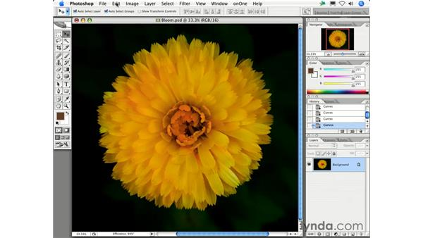 Why can't I see the dialog box I am trying to use?: Photoshop CS2 FAQs