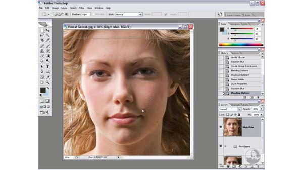 Undoing an action: Photoshop CS2 Actions and Automation