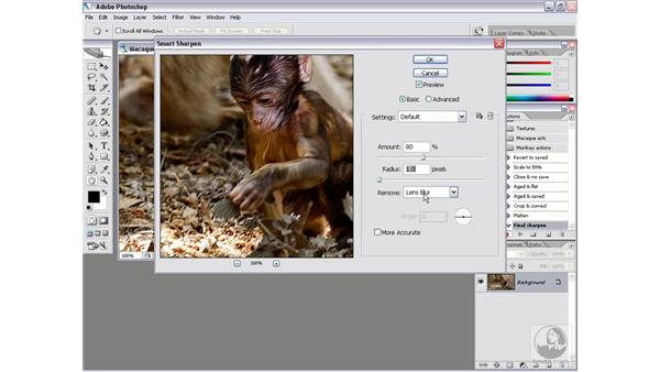 Batching multiple actions 1: Setting up the pieces: Photoshop CS2 Actions and Automation