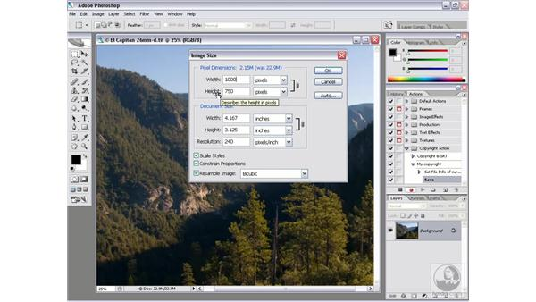 Real-world Droplet 1: Recording a copyright action: Photoshop CS2 Actions and Automation