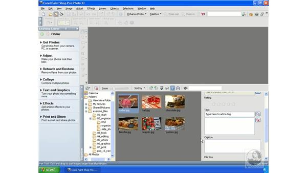 Finding and viewing photos in the Organizer: Getting Started with Corel Paint Shop Pro Photo XI