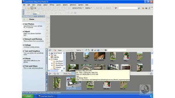 Organizing photos with Photo Trays: Getting Started with Corel Paint Shop Pro Photo XI