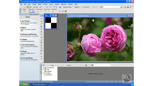 Resizing photos: Getting Started with Corel Paint Shop Pro Photo XI