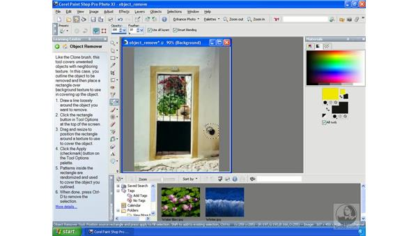 Removing objects: Getting Started with Corel Paint Shop Pro Photo XI
