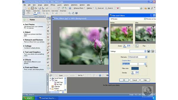 Using the Film and Filters effects: Getting Started with Corel Paint Shop Pro Photo XI