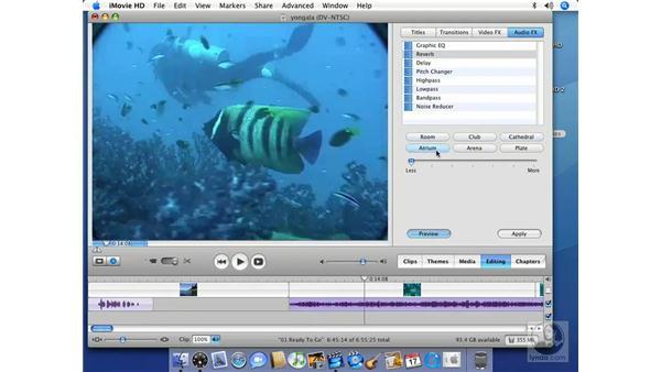 Using Audio FX: iMovie HD 6 + iDVD 6 Essential Training