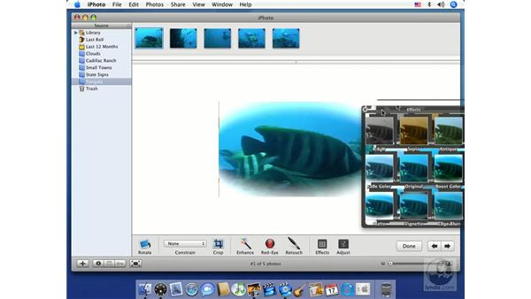 Simple slideshows: iMovie HD 6 + iDVD 6 Essential Training