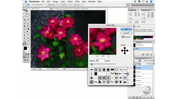 Shape Blur: Photoshop Filters