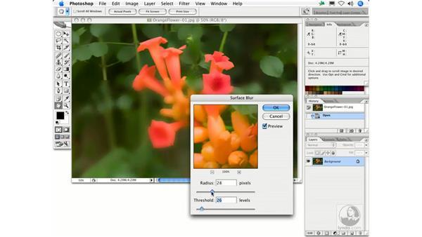 Surface Blur: Photoshop Filters