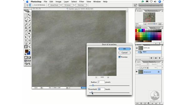 Dust & Scratches: Photoshop Filters
