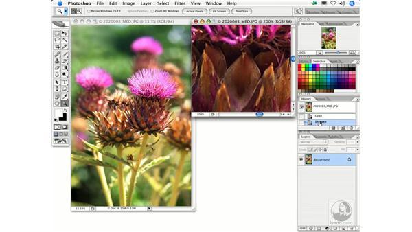 Sharpen: Photoshop Filters