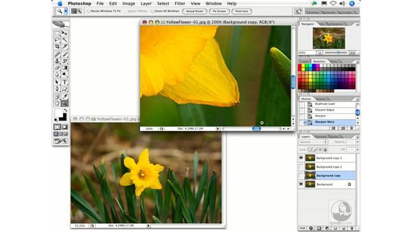 Sharpen Edges: Photoshop Filters