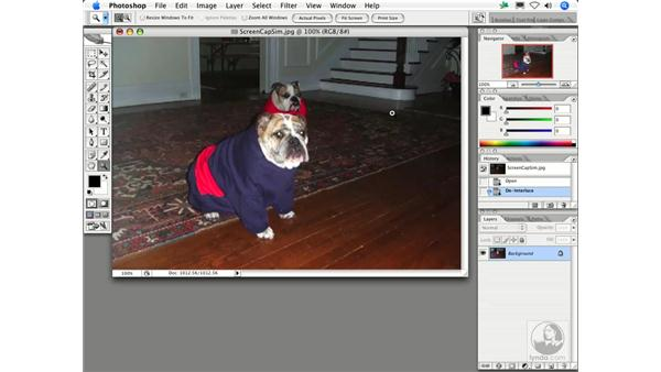 De-Interlace: Photoshop Filters