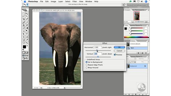 : Photoshop Filters