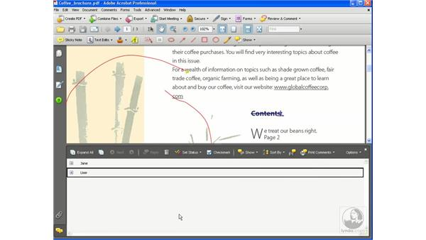 Importing and summarizing comments: Getting Started with Acrobat 8 Professional