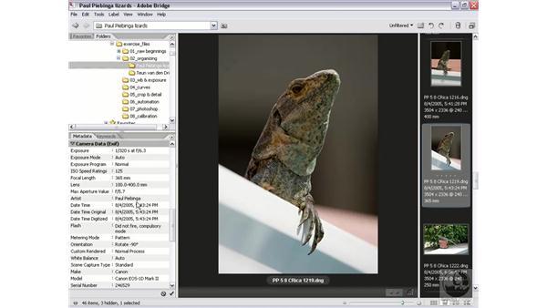 Metadata and EXIF: Photoshop CS2 Mastering Camera Raw