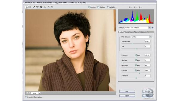 Highlights, Shadows, and Midtones: Photoshop CS2 Mastering Camera Raw
