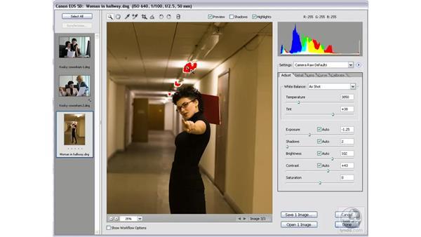 Adjusting Exposure and Shadows: Photoshop CS2 Mastering Camera Raw