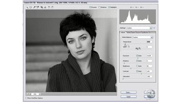 Mixing the perfect monochrome: Photoshop CS2 Mastering Camera Raw
