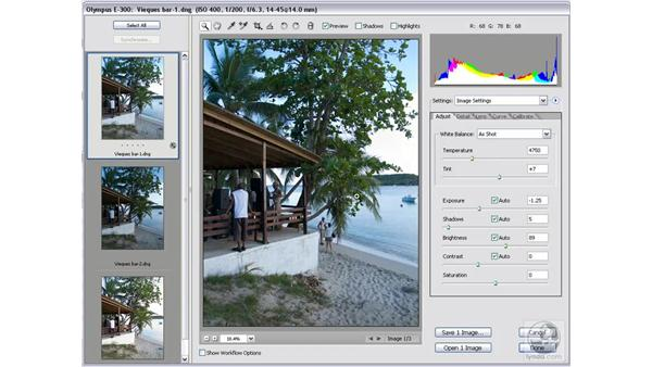 Working with the Auto adjustments: Photoshop CS2 Mastering Camera Raw