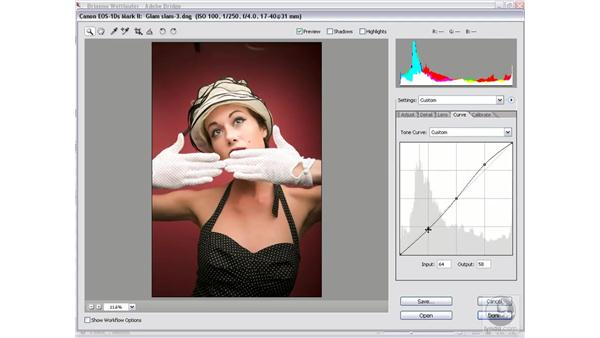 Tempering a high-contrast image: Photoshop CS2 Mastering Camera Raw