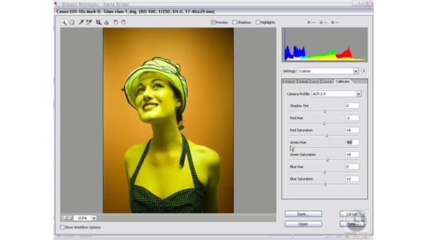 Selective color adjustments: Photoshop CS2 Mastering Camera Raw