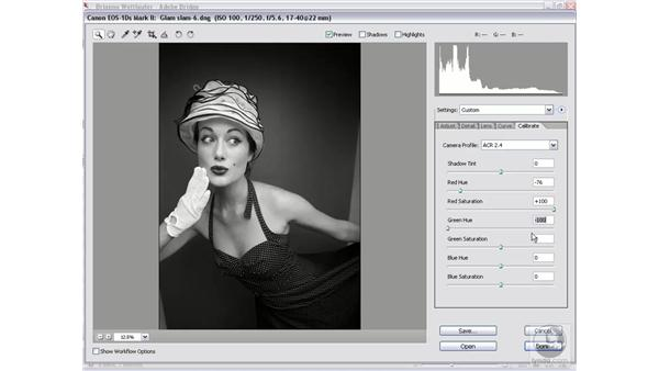 The classic : Photoshop CS2 Mastering Camera Raw