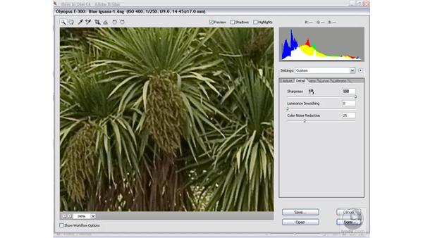The Sharpness function: Photoshop CS2 Mastering Camera Raw