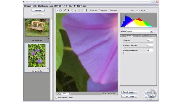 Luminance and color smoothing: Photoshop CS2 Mastering Camera Raw