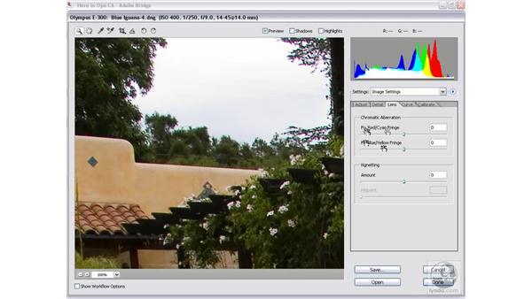 Chromatic aberrations: Photoshop CS2 Mastering Camera Raw