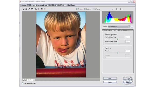 Removing a vignette: Photoshop CS2 Mastering Camera Raw