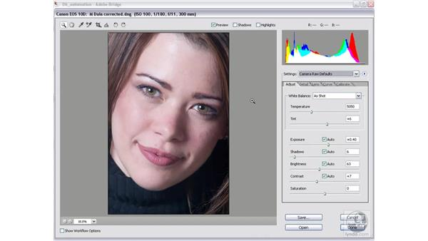 Camera Raw settings and the Bridge: Photoshop CS2 Mastering Camera Raw