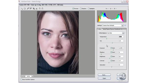 Transferring settings between images: Photoshop CS2 Mastering Camera Raw