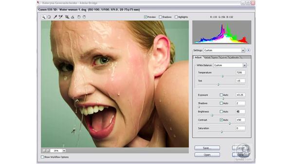 Saving your Camera Raw settings: Photoshop CS2 Mastering Camera Raw