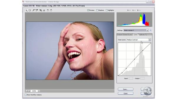 Applying your saved settings: Photoshop CS2 Mastering Camera Raw