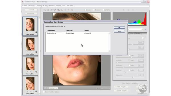 Batch-saving processed files: Photoshop CS2 Mastering Camera Raw