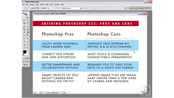 The pros and cons of entering Photoshop: Photoshop CS2 Mastering Camera Raw