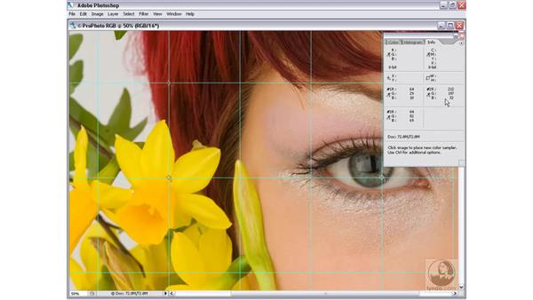 How workspaces work: Photoshop CS2 Mastering Camera Raw